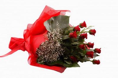 Siirt çiçek yolla  11 adet kirmizi gül buketi çiçekçi
