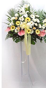 Siirt ucuz çiçek gönder   perförje çiçegi dügün çiçekleri