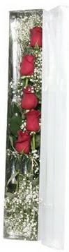 Siirt çiçek yolla   5 adet gülden kutu güller