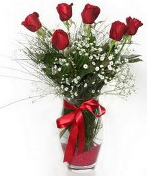 7 adet gülden cam içerisinde güller  Siirt internetten çiçek satışı