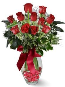 9 adet gül  Siirt çiçek gönderme  kirmizi gül