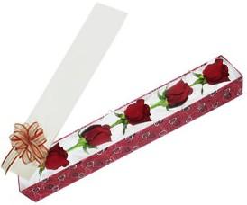 Siirt çiçek gönderme  kutu içerisinde 5 adet kirmizi gül