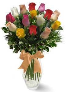 15 adet vazoda renkli gül  Siirt çiçek gönderme