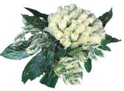 Siirt çiçek satışı  9 Beyaz gül Özel kisiler için