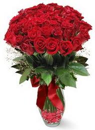 19 adet essiz kalitede kirmizi gül  Siirt internetten çiçek satışı