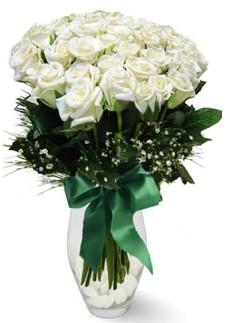 19 adet essiz kalitede beyaz gül  Siirt çiçekçi telefonları
