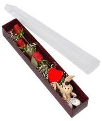 kutu içerisinde 3 adet gül ve oyuncak  Siirt çiçekçi mağazası