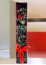 kutu içinde tek kirmizi gül  Siirt çiçek siparişi vermek