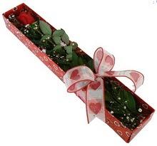 Tek kirmizi gül kutu içerisinde  Siirt uluslararası çiçek gönderme