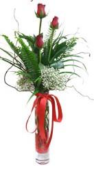 Siirt çiçek yolla  3 adet kirmizi gül vazo içerisinde