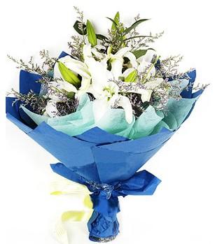 Siirt çiçekçiler  4 adet dal kazablankadan görsel buket