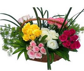 Siirt çiçek yolla , çiçek gönder , çiçekçi   35 adet rengarenk güllerden sepet tanzimi