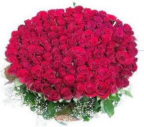 Siirt anneler günü çiçek yolla  100 adet kırmızı gülden görsel buket
