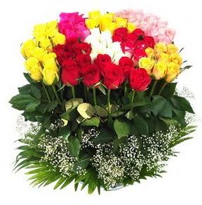 Siirt cicek , cicekci  51 adet renkli güllerden aranjman tanzimi