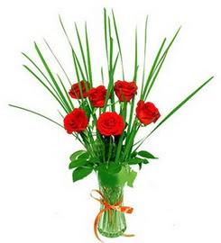 Siirt online çiçekçi , çiçek siparişi  6 adet kırmızı güllerden vazo çiçeği