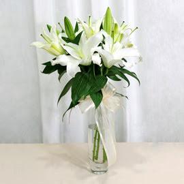 Siirt çiçekçiler  2 dal kazablanka ile yapılmış vazo çiçeği