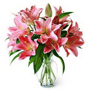 3 dal kazablanka görsel vazosu  Siirt çiçek satışı