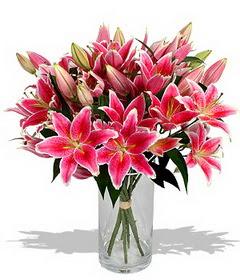 4 dal cazablanca görsel vazosu  Siirt çiçek gönderme sitemiz güvenlidir