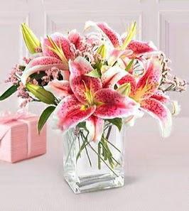 2 dal kazablanka görsel vazosu  Siirt çiçek yolla