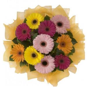 Siirt çiçek online çiçek siparişi  11 adet karışık gerbera çiçeği buketi