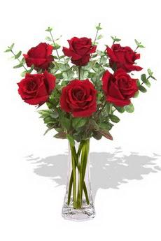 Siirt çiçek gönderme sitemiz güvenlidir  6 kırmızı gül vazosu