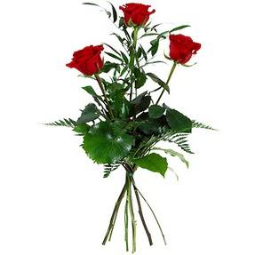 Siirt çiçek siparişi sitesi  3 adet kırmızı gülden buket