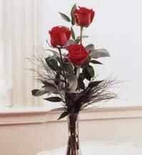 Siirt çiçek gönderme  Vazoda 3 adet güzel gül