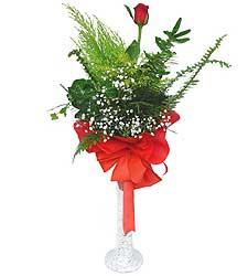 Siirt çiçekçiler  Cam vazoda masum tek gül