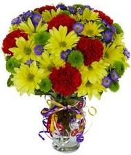 En güzel hediye karışık mevsim çiçeği  Siirt İnternetten çiçek siparişi