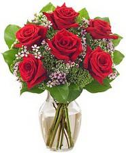 Kız arkadaşıma hediye 6 kırmızı gül  Siirt çiçek satışı