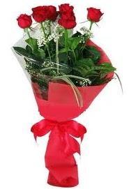 Çiçek yolla sitesinden 7 adet kırmızı gül  Siirt çiçek gönderme