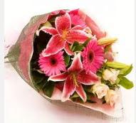 1 dal kazablanka ve mevsim çiçekleri  Siirt çiçek satışı