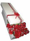 Siirt güvenli kaliteli hızlı çiçek  11 adet 1.kalite magnum güller