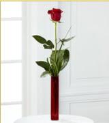 Vazo içerisinde 1 adet kırmızı gül  Siirt çiçek satışı