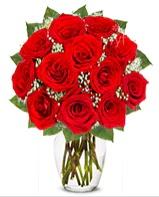 12 adet vazoda kıpkırmızı gül  Siirt hediye çiçek yolla