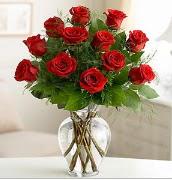 Vazo içerisinde 12 kırmızı gül  Siirt yurtiçi ve yurtdışı çiçek siparişi