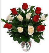 Vazo içerisinde 6 kırmızı 6 beyaz gül  Siirt İnternetten çiçek siparişi