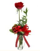 vazo içerisinde 1 adet kırmızı gül  Siirt güvenli kaliteli hızlı çiçek