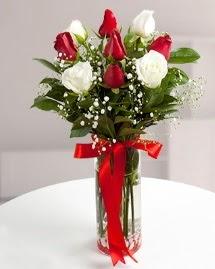 5 kırmızı 4 beyaz gül vazoda  Siirt çiçekçi mağazası