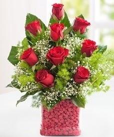 Cam içerisinde 9 adet kırmızı gül  Siirt çiçek gönderme