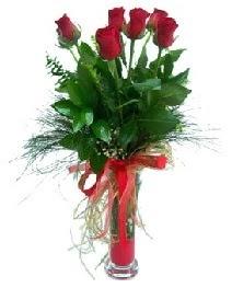 vazo içerisinde 5 kırmızı gül  Siirt uluslararası çiçek gönderme