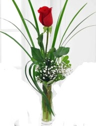 Cam içerisinde 1 kırmızı gül  Siirt çiçek servisi , çiçekçi adresleri