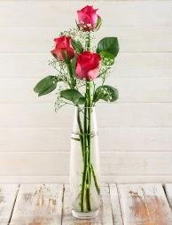 Cam içerisinde 3 kırmızı gül  Siirt yurtiçi ve yurtdışı çiçek siparişi
