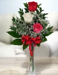 Camda 2 kırmızı 1 beyaz gül  Siirt çiçek yolla , çiçek gönder , çiçekçi