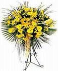 Siirt 14 şubat sevgililer günü çiçek  Sari kazablanka Ferforje