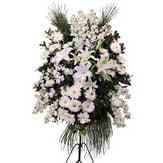 Siirt hediye çiçek yolla  Ferforje beyaz renkli kazablanka
