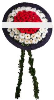mozele çiçeği  Siirt internetten çiçek siparişi