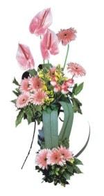 Siirt uluslararası çiçek gönderme  Pembe Antoryum Harikalar Rüyasi