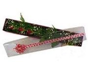 Siirt İnternetten çiçek siparişi  3 adet gül.kutu yaldizlidir.
