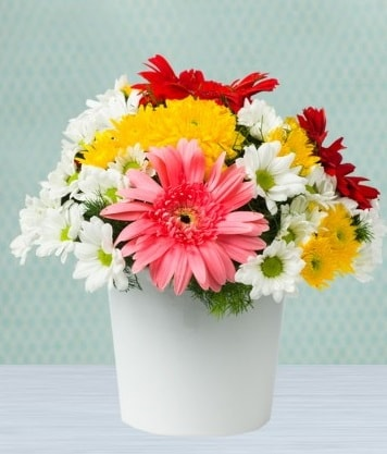 Seramik Vazoda Gelbera ve Papatya  Siirt kaliteli taze ve ucuz çiçekler